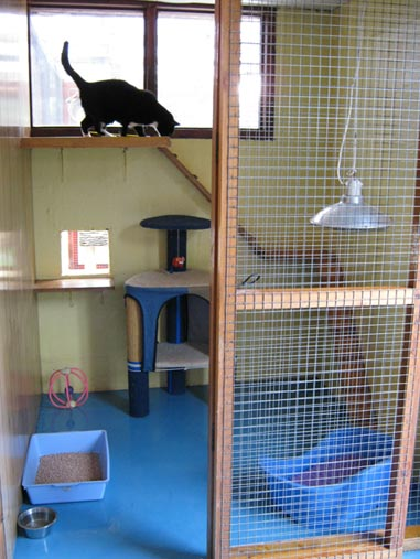 Hudora Cat Palace Cattery Clean