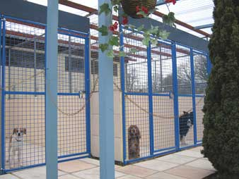 Hudora Dog Hotel Boarding Kennels popular